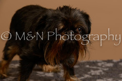 M&N Photography -_SNB0911
