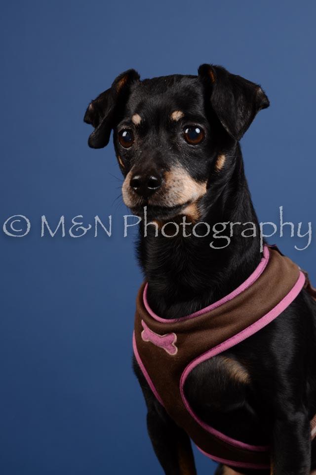 M&N Photography -DSC_5237