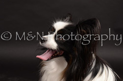 M&N Photography -DSC_9810