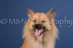 M&N Photography -DSC_5016