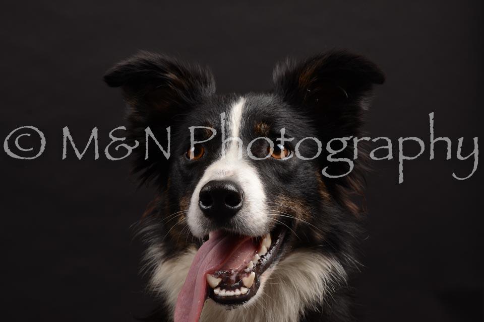 M&N Photography -DSC_9939