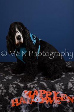 M&N Photography -DSC_5102