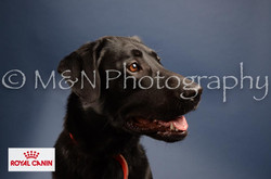 M&N Photography -DSC_4174-2
