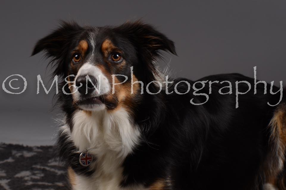 M&N Photography -DSC_2057