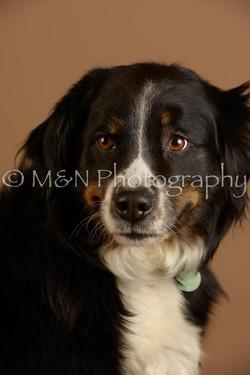 M&N Photography -_SNB0855