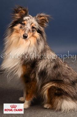 M&N Photography -DSC_4449-2