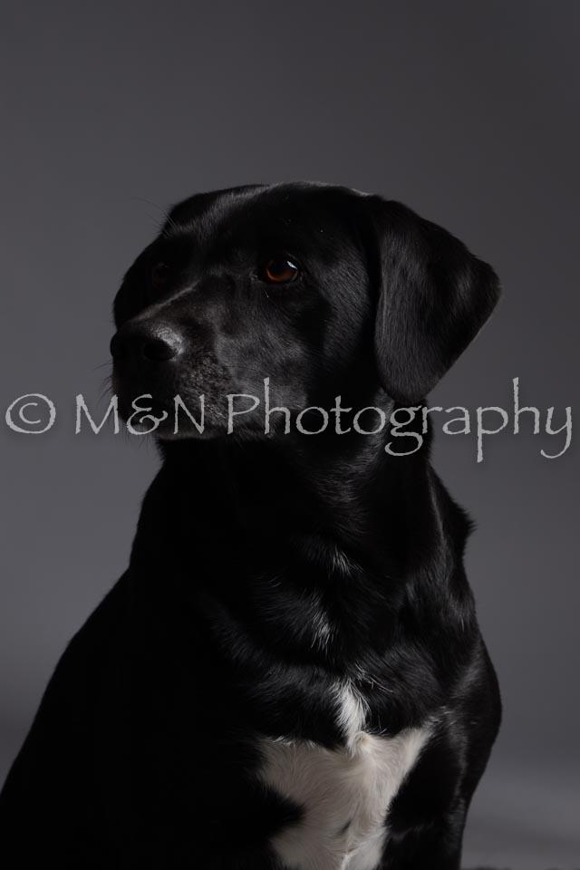 M&N Photography -DSC_2026
