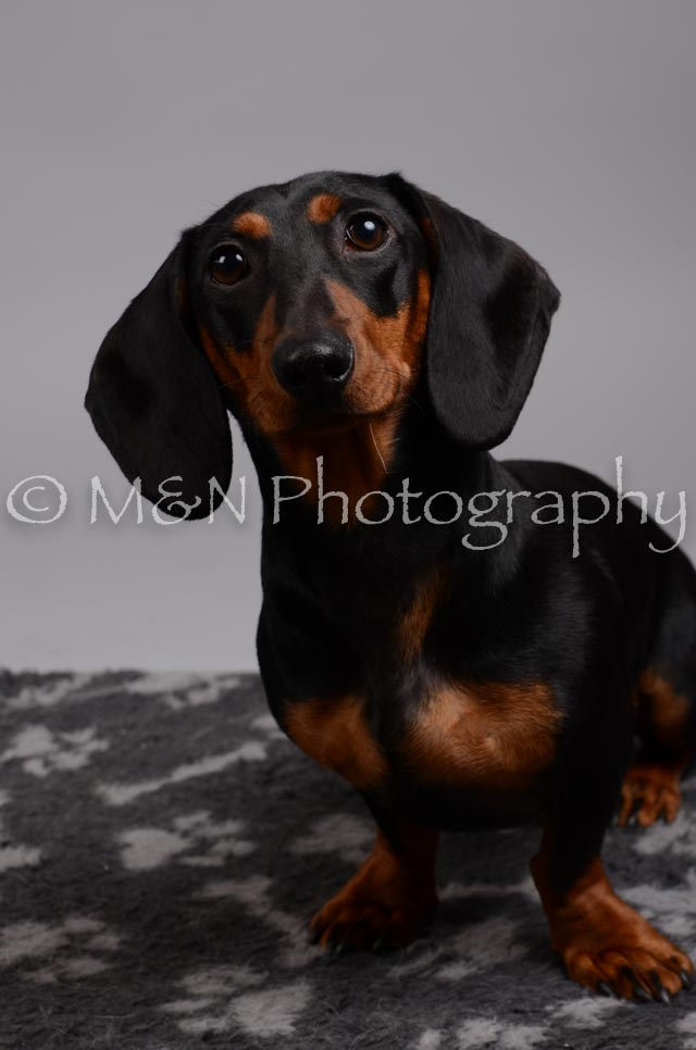 M&N Photography -DSC_2859
