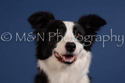 M&N Photography -DSC_5316