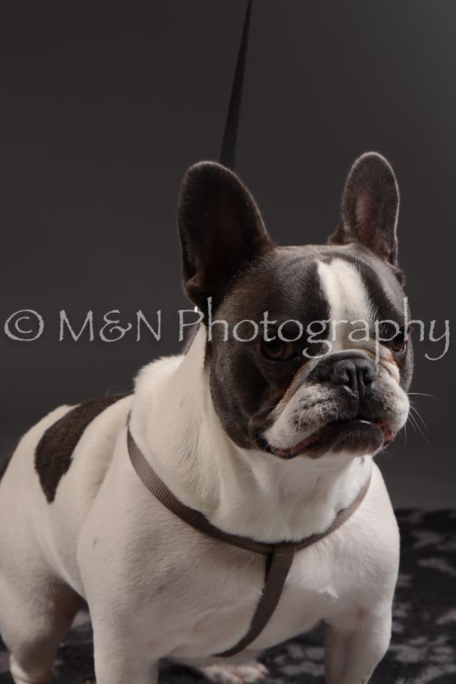 M&N Photography -DSC_2126