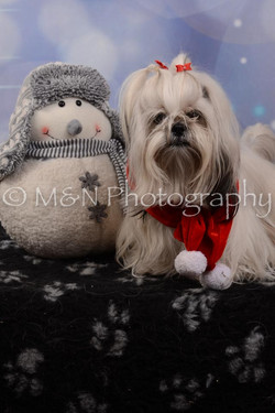 M&N Photography -DSC_7160-2