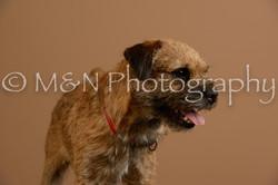 M&N Photography -_SNB0525