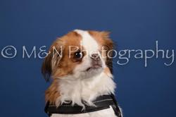 M&N Photography -DSC_5158