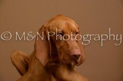 M&N Photography -_SNB0811
