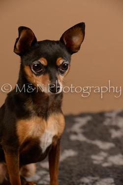 M&N Photography -_SNB0556