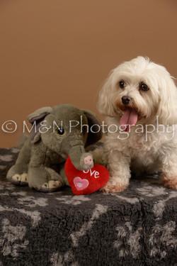 M&N Photography -_SNB0882