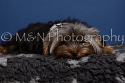 M&N Photography -DSC_5199