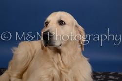 M&N Photography -DSC_5278