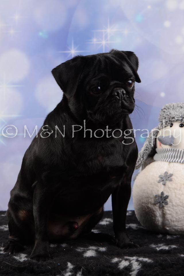 M&N Photography -DSC_6602