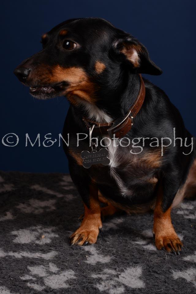 M&N Photography -DSC_4094