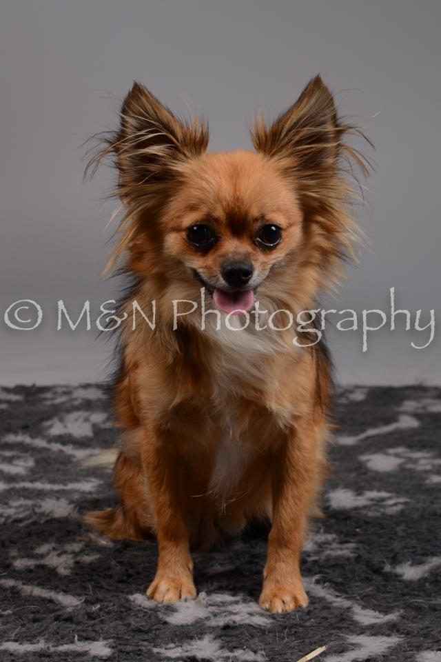M&N Photography -DSC_1787