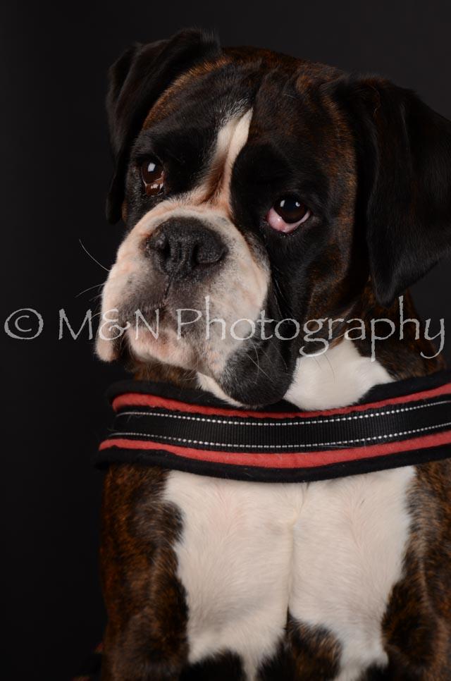 M&N Photography -DSC_5631