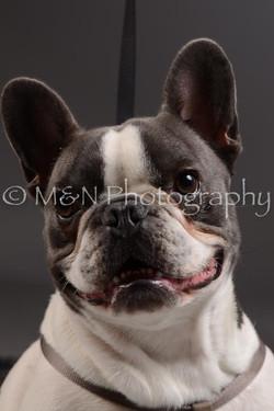 M&N Photography -DSC_2130