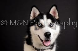 M&N Photography -DSC_5874