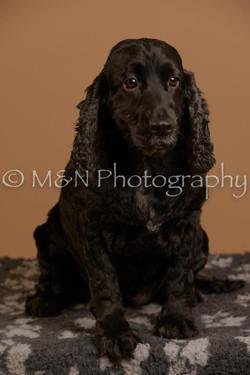 M&N Photography -_SNB0579