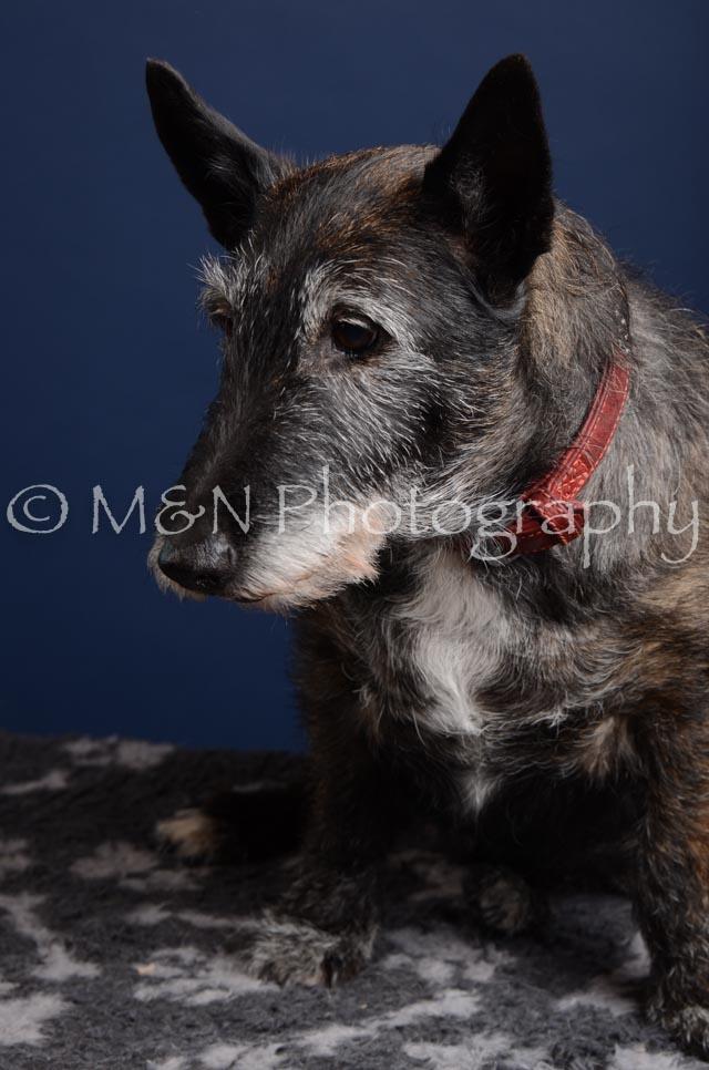 M&N Photography -DSC_3881