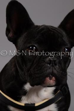 M&N Photography -DSC_1726
