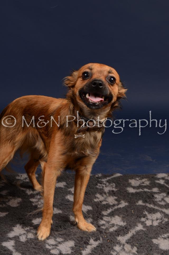 M&N Photography -DSC_0477