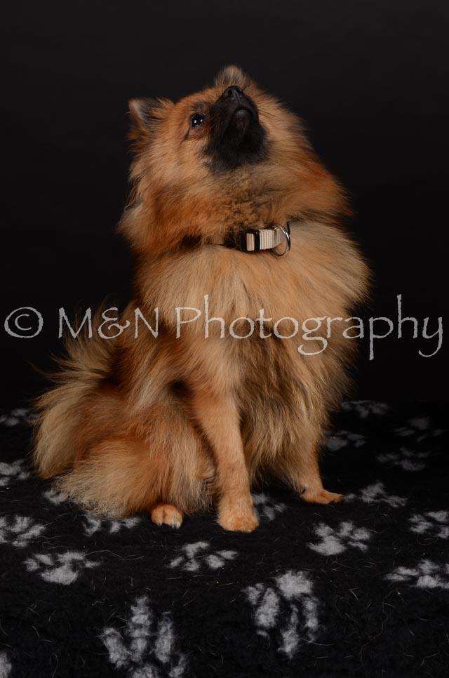 M&N Photography -DSC_5856