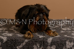M&N Photography -_SNB0912