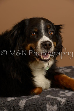 M&N Photography -_SNB0868