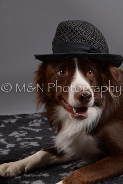 M&N Photography -DSC_1470