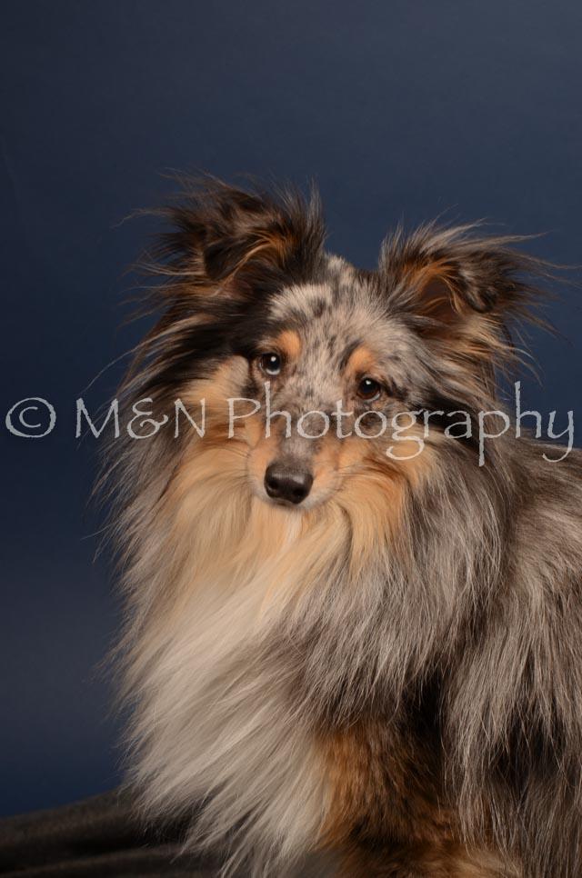 M&N Photography -DSC_4447