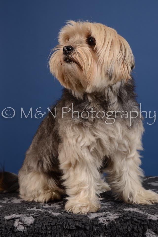 M&N Photography -DSC_4946