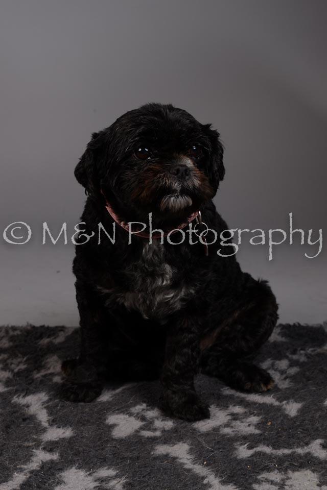 M&N Photography -DSC_2332