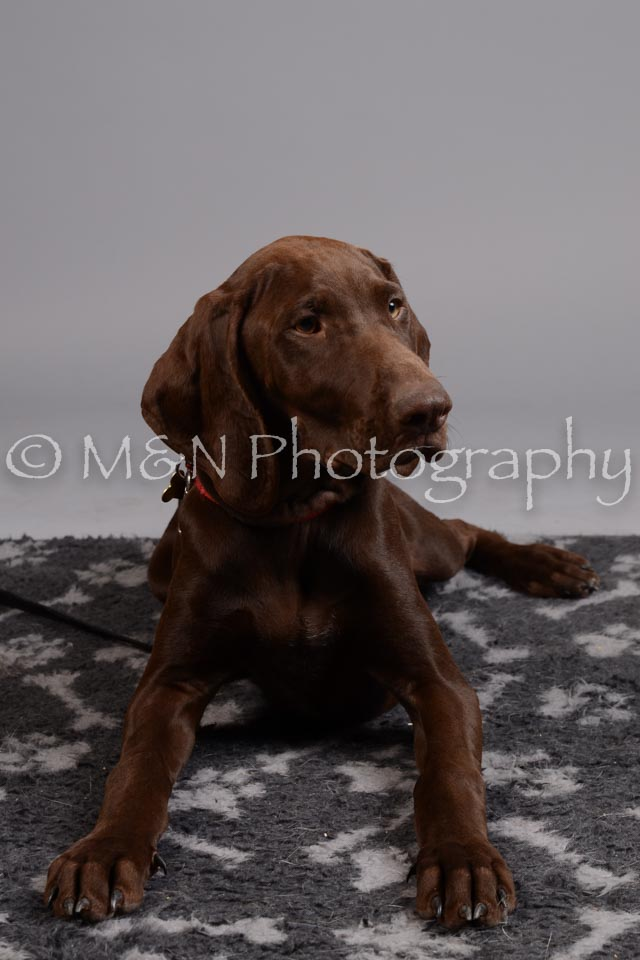 M&N Photography -DSC_2611