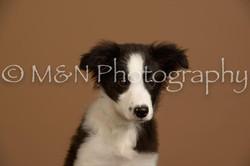 M&N Photography -_SNB0773