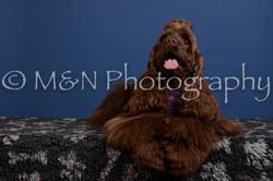 M&N Photography -DSC_4924