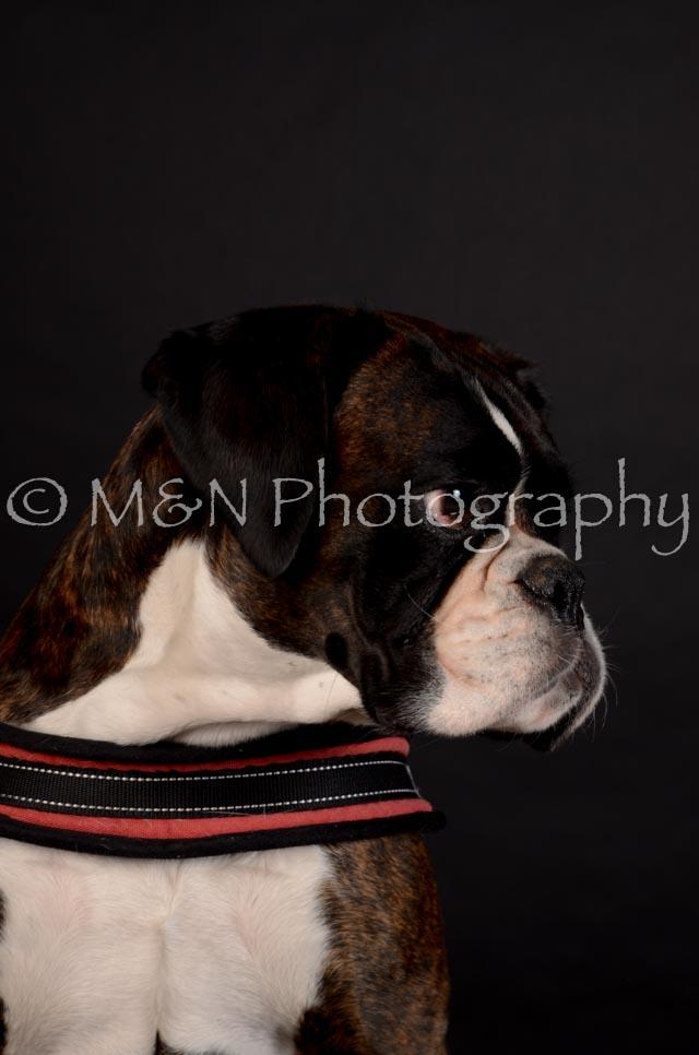 M&N Photography -DSC_5628