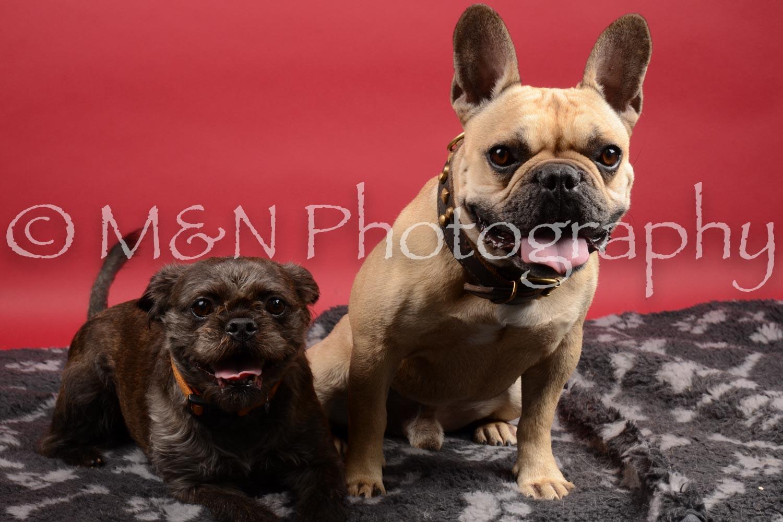 M&N Photography -DSC_8507