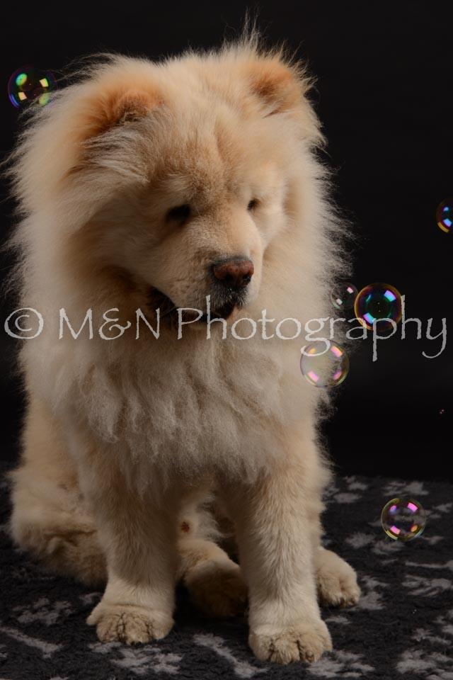 M&N Photography -DSC_9693
