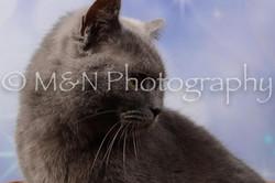 M&N Photography -DSC_6977