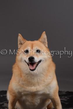 M&N Photography -DSC_2075