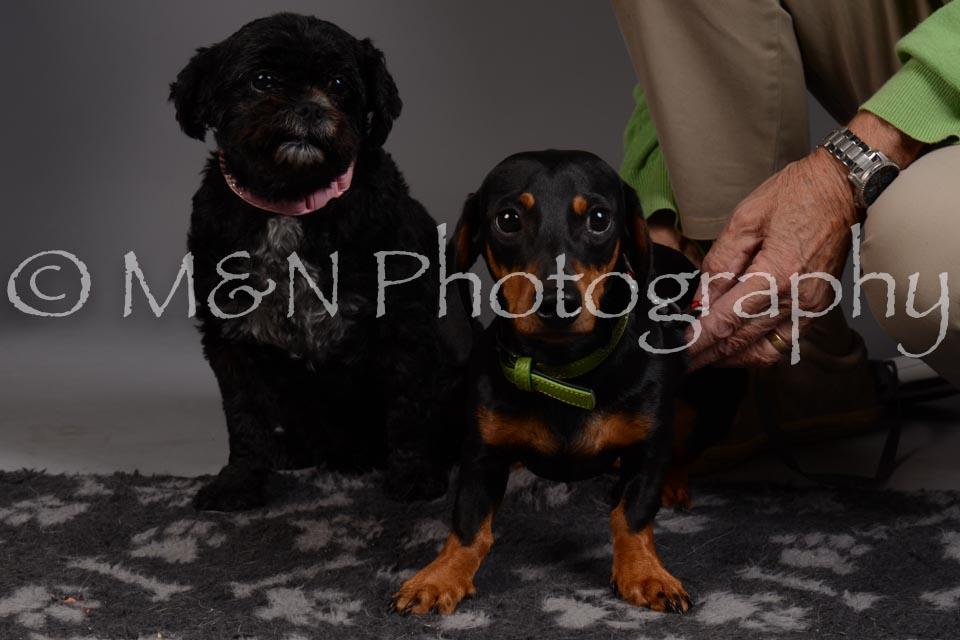 M&N Photography -DSC_2345