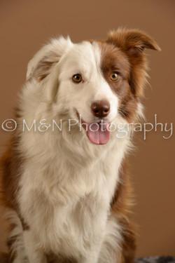 M&N Photography -_SNB0627