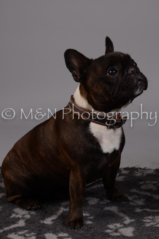M&N Photography -DSC_2568
